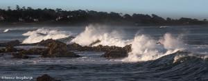 4122 Wave Action, Asilomar Beach, Big Sur, CA