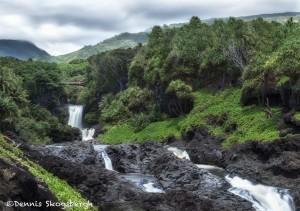 4324 Palikea Stream, Pools of Ohe'o, Waianapanapa State Park, Maui, Hawaii