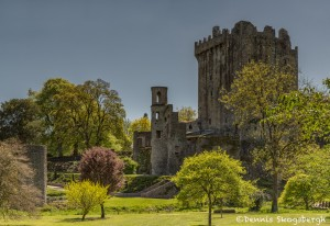 4360 Blarney Castle, Co. Cork, Ireland