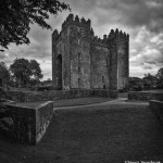 4394 Bunratty Castle, Co. Clare, Ireland