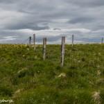 4488 Flatey Island, Iceland
