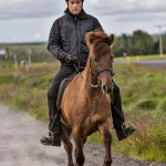 4574 Icelandic Horse Training