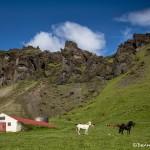 4576 Southeastern Iceland Landscape