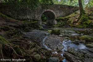 4629 Old Bridge, Tollymore Forest Park, Northern Ireland