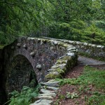 4630 Foley's Bridge, Tollymore Forest Park, Northern Ireland