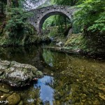 4677 Foley's Bridge, Tollymore Forest Park, Northern Ireland