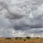 4736 Serengeti, Tanzania