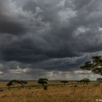 4738 Storms on the Serengeti, Tanzania