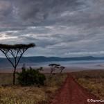 4753 Sunrise, Ngorongoro Crater, Tanzania