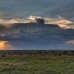 4897 Sunset, Serengeti, Tanzania