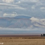 4931 Morning, Ngorongoro Crater, Tanzania