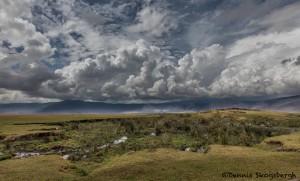 4972 Hippo Pool at Ngorongoro Crater, Tanzania