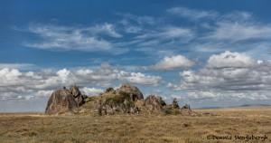 4999 NE Serengeti, Tanzania