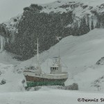 5086 Blizzard, Tindur SH 179 Fishing Boat, Olafsvik, Snaefellsnes Peninsula, Iceland