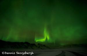 5114 Aurora Borealis (Northern Lights), Iceland