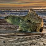 5124 Sunrise, Jökulsárlón Iceberg Beach, Iceland