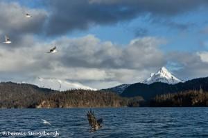 5184 China Poot Bay, Alaska