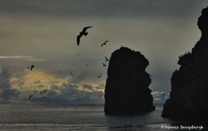 5270 Kachemak Bay, Homer, Alaska