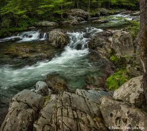 5295 Greenbriar Cascade, Spring, Great Smoky Mountain National Park, TN