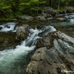 5296 Greenbriar Cascade, Spring, Great Smoky Mountain National Park, TN
