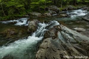 5296 Greenbriar Cascade, Spring, Great Smoky Mountain National Park, TN