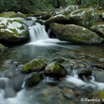 5299 Cascade, Spring, Great Smoky Mountains National Park, TN