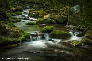 5303 Cascade, Spring, Great Smoky Mountains National Park, TN