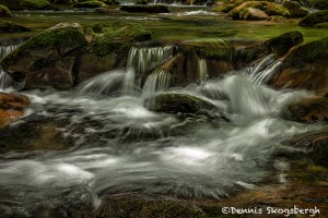 5304 Cascade, Spring, Great Smoky Mountains National Park, TN