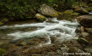 5306 Cascade, Spring, Great Smoky Mountains National Park, TN