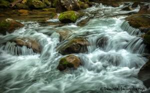 5307 Cascade, Spring, Great Smoky Mountains National Park, TN