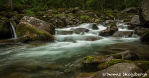 5308 Cascade, Spring, Great Smoky Mountains National Park, TN