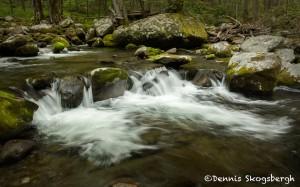 5310 Cascade, Sam's Creek, Spring, Great Smoky Mountains National Park, TN