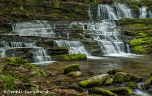 5313 Spring, Rhododendron Creek Waterfall, Great Smoky Mountains National Park, TN