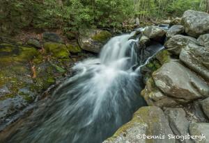 5317 Cascade, Spring, Great Smoky Mountains National Park, TN