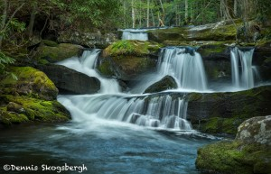 5318 Cascade, Spring, Great Smoky Mountains National Park, TN