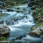 5319 Cascade, Spring, Great Smoky Mountains National Park, TN