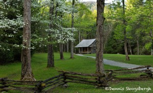 5323 Carter Shield's Cabin, Spring, Great Smoky Mountains National Park, TN