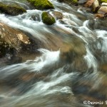 5325 Cascade, Spring, Great Smoky Mountains National Park, TN