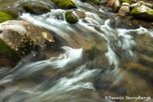 5325 Cascade, Spring, Great Smoky Mountains National Park, TN