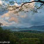 5327 Sunrise, Spring, Great Smoky Mountains National Park, TN