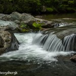 5328 Cascade, Spring, Great Smoky Mountains National Park, TN