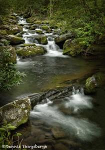5331 Cascade, Spring, Great Smoky Mountains National Park, TN