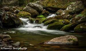 5332 Cascade, Spring, Great Smoky Mountains National Park, TN