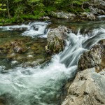 5333 Cascade, Spring, Great Smoky Mountains National Park, TN