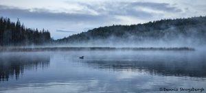5406 Foggy Sunrise, Lac Le Jeune, BC