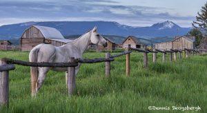 5409 Mormon Row Horse Ranch, Grand Teton National Park, WY