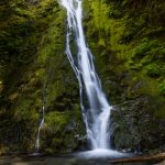5482 Madison Falls, Olympic National Park, WA