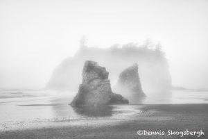5494 Foggy Morning, Ruby Beach, Olympic National Park, WA