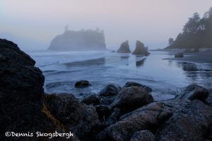 5500 Foggy Sunrise, Ruby Beach, Olympic National Park, WA