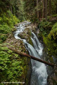 5504 Sol Duc Falls, Olympic National Park, WA